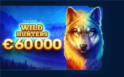 Обзор соревнования Wild Hunters Network